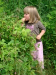 Beatrice takes us to her favorite spot for wild blackberries